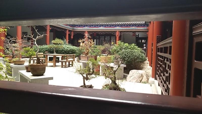 дворик бонсай лево