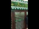 Могила Имама Ахьмада Ар Рифаий