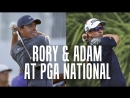 Rory Mcilroy and Adam Scott Take on PGA National 2018