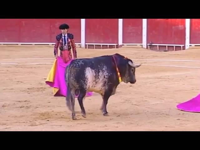В Испании бык убил матадора Виктора Баррио прямо во время выступления.