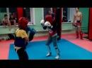 тайский бокс Первоуральск Малетин Данил (синий)