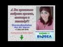 А Вы правильно выбрали наставника проект команду Бизнес с BIOSEA Работа в интерн