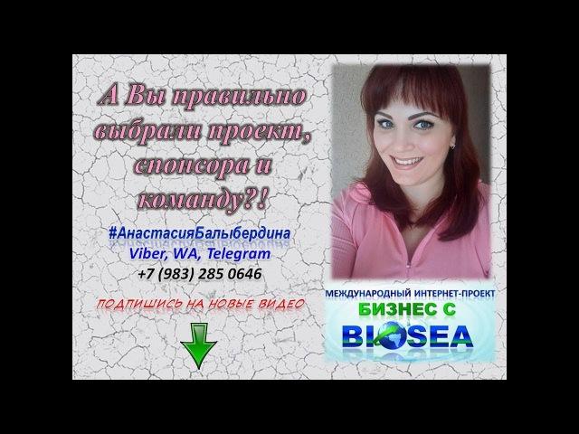 А Вы правильно выбрали наставника, проект, команду?! Бизнес с BIOSEA. Работа в интерн...