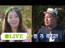 171030 Olive Island trio preview EP.25