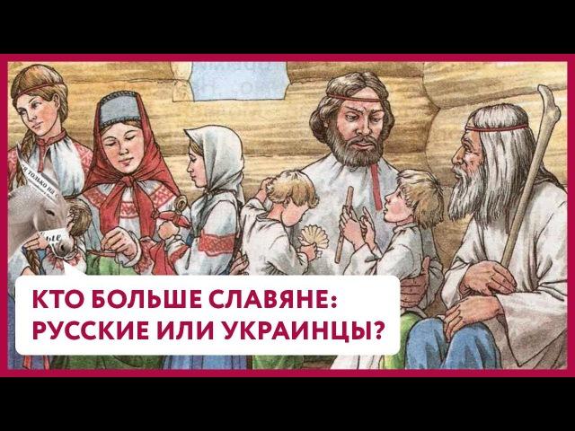 Кто больше славяне русские или украинцы Уши Машут Ослом 17 О Матвейчев