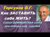 Торсунов О.Г. Как ЗАСТАВИТЬ себя ЖИТЬ Самая ДЕФИЦИТНАЯ СИЛА для победы над судьбой