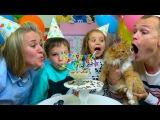 День Рождения КОШЕЧКИ Мурки  Новые ПИТОМЦЫ Кати и Макса  Шарики и подарки на cat birthday