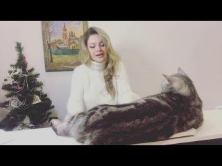 Оля Ла Ева - Рождественский романс-импровизация под piano live