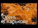 Осень в Харькове (прогулка по городу и канатная дорога) | Sergey Biserov
