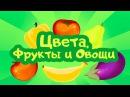 ЦВЕТА, ФРУКТЫ и ОВОЩИ. Цып-Цып ТВ. Образовательный мультфильм для малышей от 0 до 3 лет.