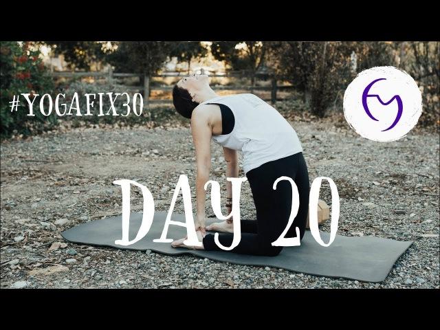 Vinyasa Flow to Forearm Balance (Pincha Mayurasana) Day 20 With Fightmaster Yoga