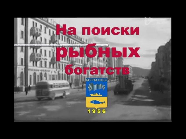 На поиски рыбных богатств. Док. фильм. Мурманск-1956 год. (со звуком)