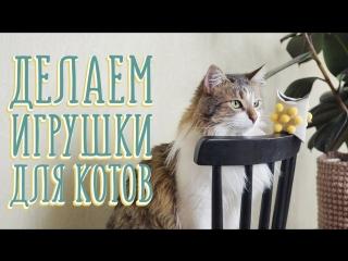 Делаем игрушки для котов и наблюдаем реакцию [Идеи для жизни]