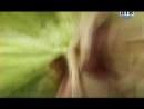 Безмолвный свидетель 3 сезон 96 серия СТС/ДТВ 2007