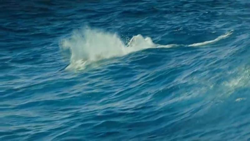 Океан нереально красиво.