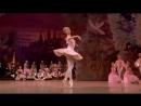 Чайковский. Балет Щелкунчик. 2 действие. Вариация 2 для танцовщицы Танец Феи