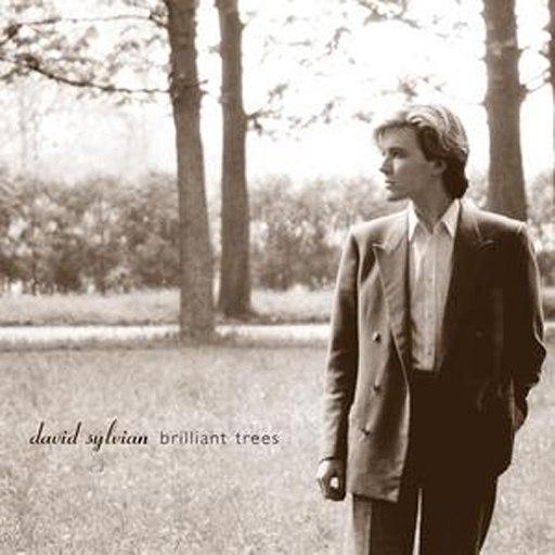 David Sylvian альбом Brilliant Trees