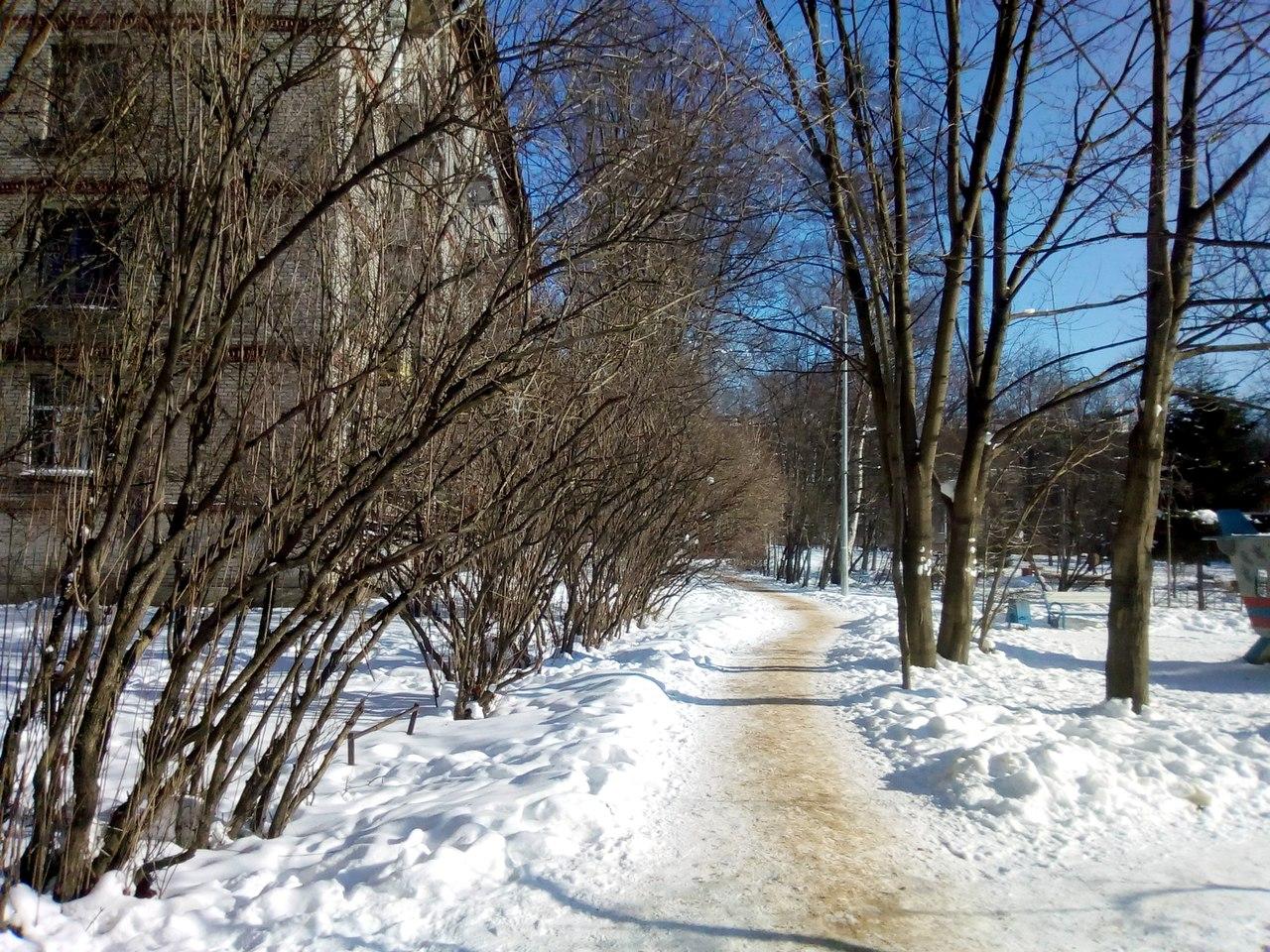 -20 в Петербурге. Последний день зимы
