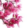 Сакура - удивительные товары |Подарки Киров