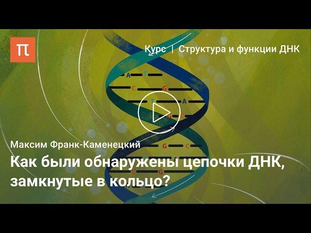 Кольцевые ДНК — Максим Франк-Каменецкий