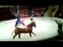 Сходила с пьяным мужем в цирк. Прикол.I went with a drunken husband in the circus. The trick