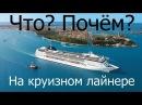 Рекомендации начинающему круизёру от Аллы Хариной или что почём на круизном лайнере Meraviglia