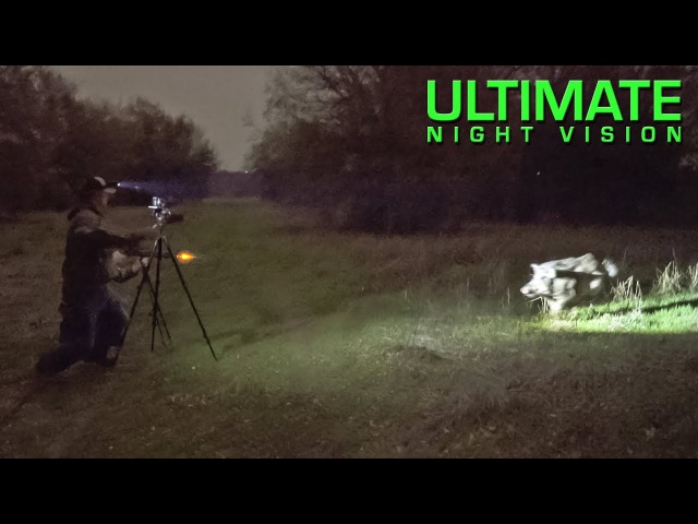 Hunter Attacked by Angry Boar During Thermal Hunt with Trijicon REAP IR