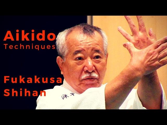 AIKIDO Fukakusa Shihan: Jodan Tsuki Shihonage