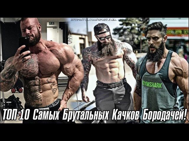 ТОП-10 КАЧКОВ БОРОДАЧЕЙ - (Sportfaza)