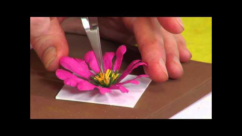 How to Use the Sizzix Gazania Flower Die by Susan's Garden