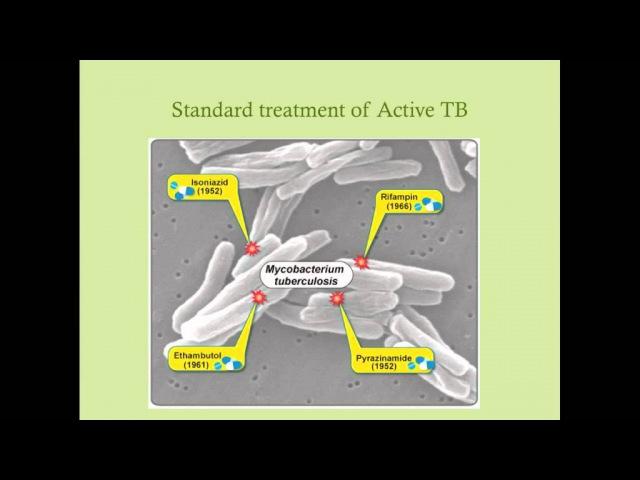 Tuberculosis CRASH Medical Review Series
