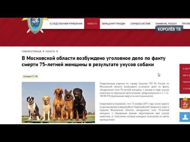 Собаки загрызли жительницу Первомайского недалеко от собственного дома