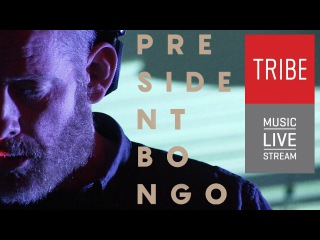 President Bongo ( Iceland ) live set performance @Tribe #tribeMusic