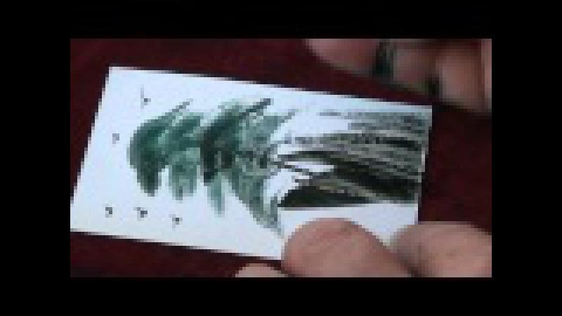 Китайский художник рисует рукой