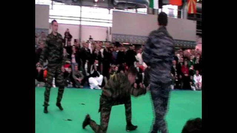 Чемпионат Мира WTKA 2010 Италия система ВОИН