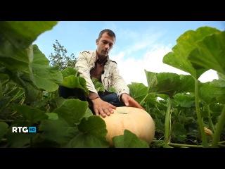 RTG HD. Монастырские сады Валаама (2013 -14)