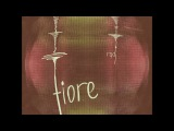 radj   fiore 2017 dusted wax kingdom, illsound records - trip-hop, downtempo ep
