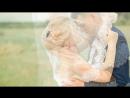 Красивая яркая свадьба Анастасии и Александра