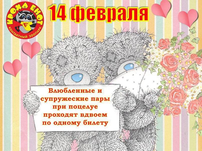 Кроха Енот   Ярославль