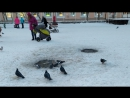 Будничная неспешная жизнь заполярного городка Североморск 🏡