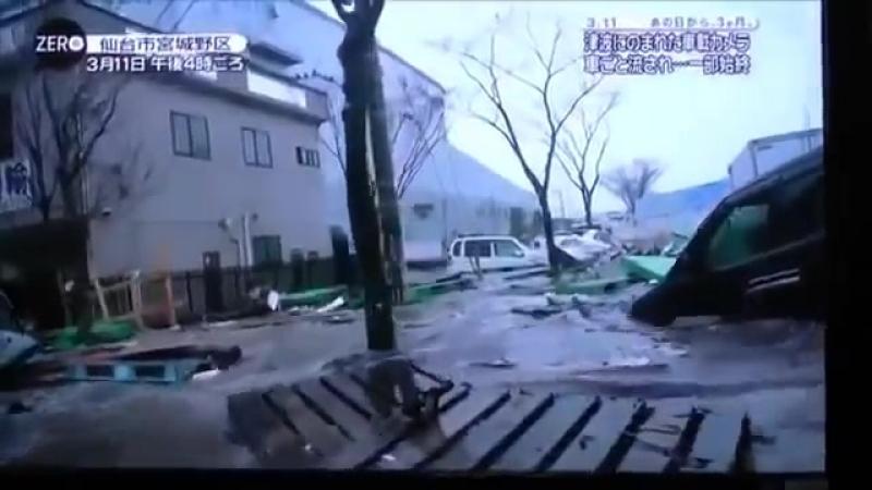 Цунами в Японии шокирующее видео