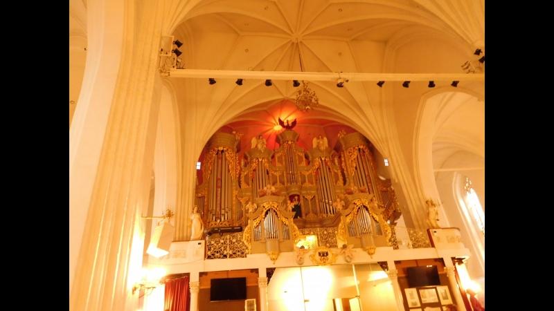 Отрывок органного концерта