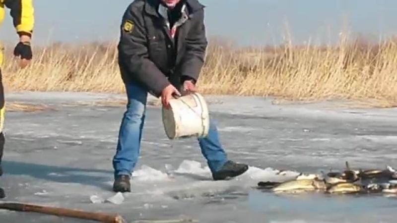 афигеная рыбалка