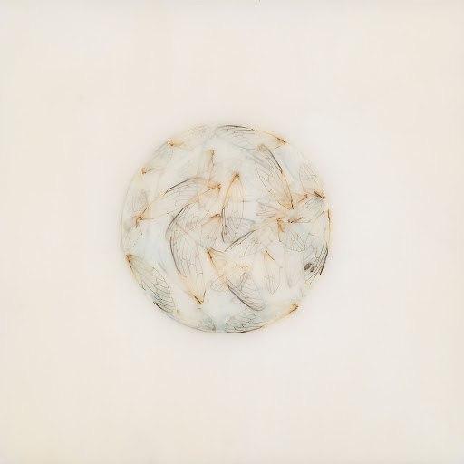 Lotte Kestner альбом Off White