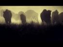 - Следуй за мной (promo video 2012)
