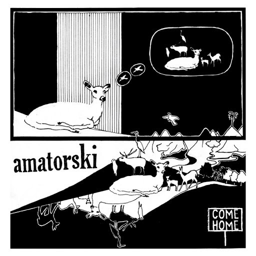 Amatorski альбом Come Home