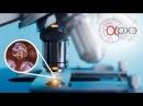Андрей Наумов: Актуальные проблемы оптики и фотоники