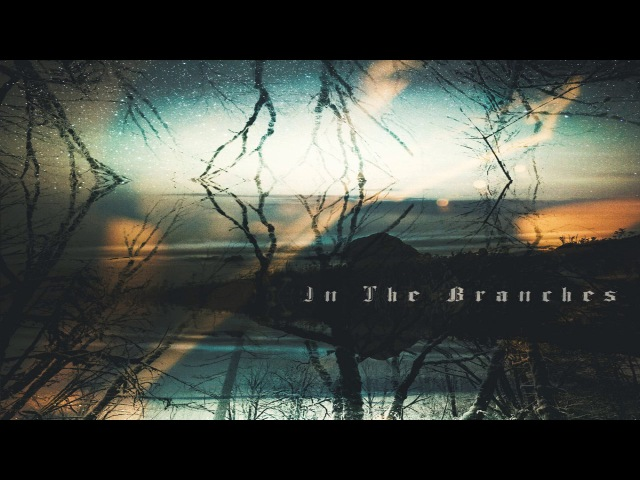 In The Branches - In The Branches (Full Album)