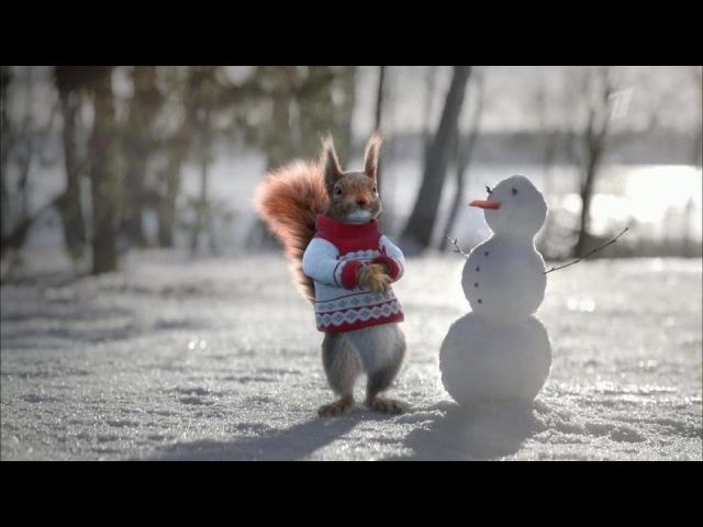 Новогодние белки наПервом: все танцы ипесни водном видео