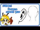 Как нарисовать аниме уши